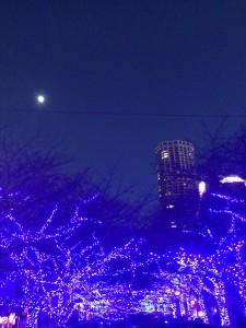 写真 2014-12-02 17 00 20